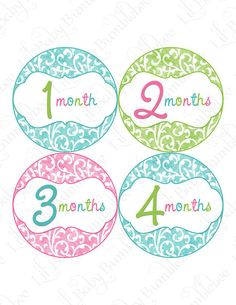 Monthly Onesie Stickers Baby Month Stickers by LittleBabyBumblebee, $9.00