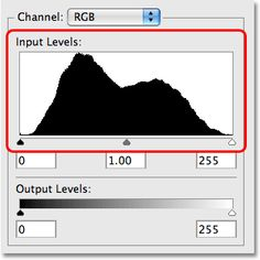 The histogram in the Levels dialog box in Photoshop. Image © 2009 Photoshop Essentials.com.