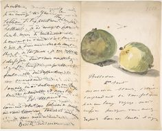 Édouard Manet (1832-1883) - A Letter to Eugène Maus, Decorated with Two Apples -  Watercolor, pen and ink on wove paper - http://www.metmuseum.org/collection/the-collection-online/search/354277