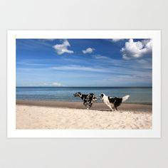 "Art Print / MINI (10"" x 7"") Originalaufnahme (originalaufnahme) Playing dogs at the beach by Originalaufnahme $18.00  #posters #artworks #graphic design #texture #inspiration #artists #stretched canvas #illustrations #room #products #pretty #colour #inspiration #Wall Art #Home Decor #Throw Pillows #Cards #Mugs #Shower Curtains #Wall Tapestries#Duvet Covers #Rugs #Wall Clocks #Art Prints #Framed Art Prints #Canvas Prints #Editions #Wall Tapestries"