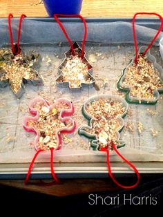 Fun to make DIY Ice Ornaments!  Great kids craft for a winter day and the birds love them!