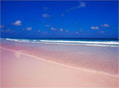 BeachWithPinkSand3