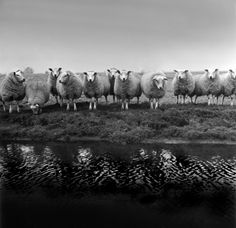 30+ Amazing Black and White Photography Examples