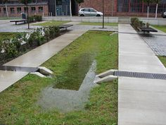 Берлин, Адлерсхоф. Площадь с нишами-накопителями – элемент экосистемы с постоянной растительностью благодаря удержанию осадков.