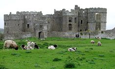Carew Castle, Wales, and Family of Rhys -  Would love to go see land of ancestors some day