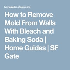how to clean mold from walls with bleach
