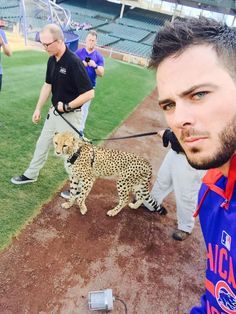 Kris Bryant selfie with a cheetah! Chicago Blackhawks, Chicago Cubs Baseball, Baseball Boys, Baseball Players, Us Soccer, Soccer World, Cub Sport, Cubs Players, Hockey