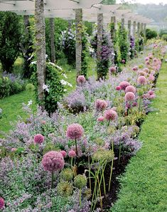 Even the border garden at Bedford home is a sight to behold. Purple nepeta, before it became unwieldy and took over her… Most Beautiful Gardens, Amazing Gardens, Garden Cottage, Garden Beds, Garden Pool, Indoor Garden, Flower Landscape, Landscape Design, Shade Garden