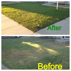 See this Sandy Utah customer's yard after making some quick sprinkler fixes and helping it bounce back.