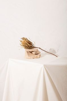 Loup Collection on Behance Still Life Photography, Artistic Photography, Fashion Photography, Product Photography, Photography Ideas, White Aesthetic, Aesthetic Photo, Skirt Mini, Photo Images