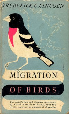 Migration of Birds, cover illustration by Bob Hines, 1952 Best Book Covers, Vintage Book Covers, Beautiful Book Covers, Book Cover Art, Book Cover Design, Vintage Books, Book Art, Vintage Library, Ex Libris