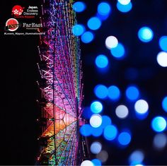 Collaboration challenge @Lovers_Nippon & @Japan_Night_View & @Far_EastPhotography   Winner : @ryoko093  Featured tag : #Lovers_Nippon_illumination2016  Location : 大阪府(OsakaJapan)  Photo selected : @Japan_Night_view    CongratulationsThank you for sharing a wonderful pic for us    #大阪府 #天保山 #観覧車 #イルミネーション #玉ボケ #日本 #絶景 #FerrisWheels #NightView #Bokeh #Osaka #Japan #illumination2016    Lovers_Nippon Member  Admin:@kamigaki_photography  Mod/Slr: @nobuo_y @criss1016  @nakashi726 @rrrrei…