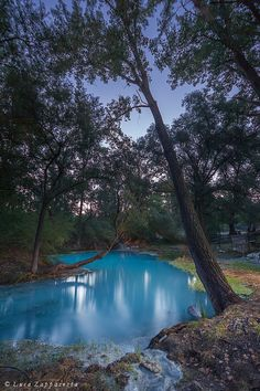 Turquoise dawn - Lavino Sulphur Springs Territorial Park, Abruzzo, Italy