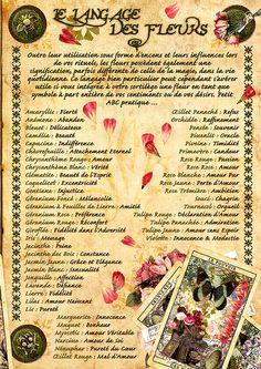 Les langages des fleurs