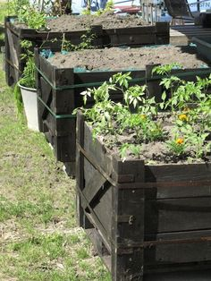 Herbs and vegetable planters from gear box crates! - SURVIVE FRANCE NETWORK