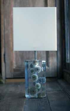 Found objects encased in resin.  Thistles Lamp (echinops, resin, acrylic) by Sasha Sykes, who resides currently in Couty Carlow.  FT, April 2014 How to Spend It.Com