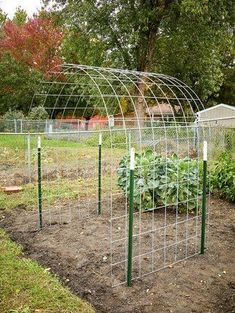 Make an Eye-Catching Bean Trellis for Your Garden : DIY Bean Trellis Bean plants climb and cover anything in their path, but can sometimes look messy and tangled. Try making this arched bean trellis for your garden… Vegetable Garden Design, Veg Garden, Small Garden Design, Vegetable Gardening, Veggie Gardens, Farm Gardens, Gardening Tips, Vertical Vegetable Gardens, Garden Design