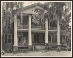 Gloucester in Natchez MS....built 1803 it is the oldest of Natchez's grand mansions. Original home of Winthrop Sargent, first Mississippi Territory Governor.
