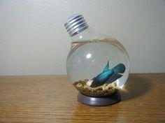 repurposed lightbulb fish bowl