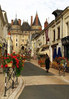 Langeais Touraine, Loire Valley ~ France ** This is a beautiful town.