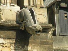 gargouille de la cathédrale de Reims.