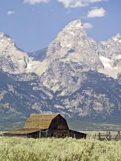Living among the moose, wolves, and bison at the base of the Grand Teton mountain range.  Jackson Hole, WY