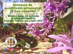 """En QuisQueya eco-arte-café estamos de paréntesis primaveral. ¡Y nos encanta! Mientras tanto, les invitamos a visitar en Comala la Feria del """"Ponche, pan y café"""" 2018"""