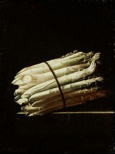 Adriaen Coorte. Still Life of Asparagus. 1699