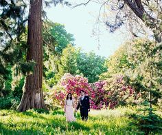 The Walled gardens at Combermere Abbey wedding venue in Shropshire   CHWV #wedwithted @tedbaker