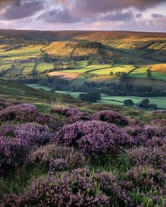 Rosedale, North Yorkshire, England by Ross J Brown