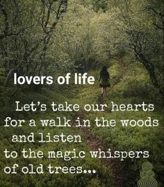 Into The Woods Quotes, Walk In The Woods, Life Quotes Love, Quotes To Live By, Spiritual Tattoo, Spiritual Symbols, Forest Quotes, Quotes About Nature, Tree Quotes