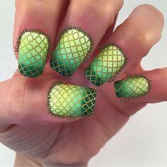 Green gradient mani #clairestelle8august ##bomnailartaug #dkweeklyaug  polishes used #fingerpaints Grassy Knoll, #chinaglaze  Be more pacific,Shore Enuff,Holly-Day,#mundodeunas Ocre-47 #uberchicbeauty  UC plate 3-03 #uberchic #nailoftheday #notd #dailynailart #dailydigits #nailfeature #nailartclub #nailstamping #nailitmag #nailswag #thenailartstory #nail #nailpromote #nailpolish #canadiannails #Page #fellowme #instagramlike #instagramlikes