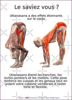 « Planches Musculo-squelettique des positions de Yoga - N°7 » par rodolphe Augusto   Redbubble
