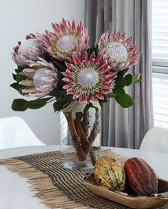 King Protea - one single amongst other flowers in bridal bouquet. Any more would be flippin heavy as shit Protea Bouquet, Protea Flower, Bouquets, Exotic Flowers, Beautiful Flowers, Flor Protea, Australian Native Flowers, Arte Floral, Flower Photos