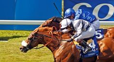 Ulysses (IRE) charged to the lead in the final furlong in the July 8 Coral-Eclipse (G1) at Sandown, then was all out to hold off the best-performing of the 3-year-olds, Barney Roy (GB), winning by a nose. 7/8/17