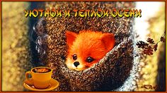 «Уютной и теплой осени!» http://www.playcast.ru/view/10894678/042b3103e2b31032e13ad6b5651c91a316fcf7f2pl