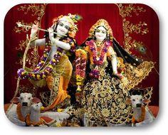 Today's Darshan (31-08-13) Sri Sri Radha Vrindavanchandraji @ISKCONNVCC, Pune