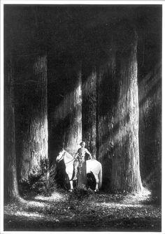 Sigfried Fritz Lang