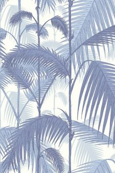 Cole & Son -  Contemporary Restyled - Palm Jungle Wallpaper - Blue 951005
