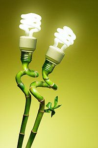 Photograph - Conceptual Lamps by Carlos Caetano