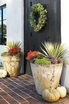 Fall Containers Anyone Can Recreate Best Ideas for Fall Container Gardening: Texas and Southwest Regional Container Fall Planters, Outdoor Planters, Planter Pots, Planter Ideas, Container Flowers, Container Plants, Container Gardening, Autumn Garden, Easy Garden