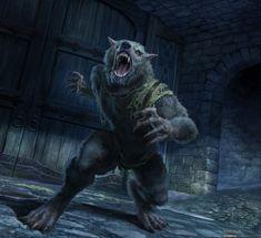 """White Runner, Ravager"" Artist Brian Valeza. Legend Games, Guild Wars 2, Vampires And Werewolves, Creature Feature, Age, Medieval Fantasy, Elder Scrolls, Werewolf, Fantasy Characters"