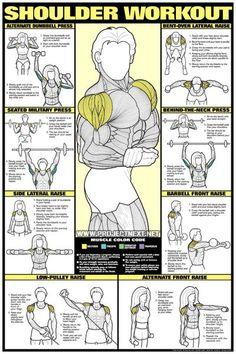 Shoulder Workout - Neck Raise Barbbell Dumbbell Exercise Gym