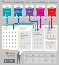 Theoretical distribution of intravenous fluids on infusion