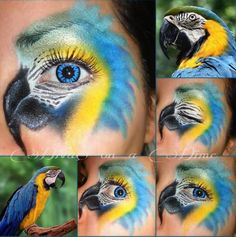 Parrot Halloween Eye  Makeup
