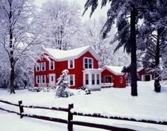 I want this house, yard, snow and fence. I want my children to be playing in this yard so I can take pictures of them. <3 Some day!