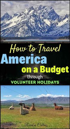 In this guide I am sharing details on volunteer holidays in America, as one of the most affordable ways to travel the USA on a budget. If you are looking to save money when exploring America, give this post a read! Us Travel Destinations, Travel Deals, Travel Usa, Travel Guides, Usa Roadtrip, Train Travel, Ways To Travel, Travel Advice, Travel Tips