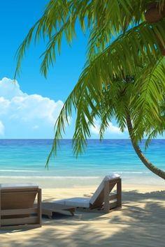 ⚓ #beach #ocean #sea #palm #palmtree #sand #blue #sky #clouds