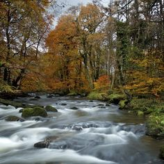 Autumn by Matthew Elliott on 500px