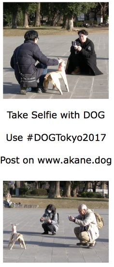 DOGTokyo2017 by Akane Takayama. Two DOG sculptures were placed out in Ueno Park to see the response. Everyone wanted to take Selfies and snaps.
